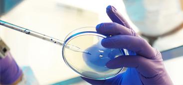 Australian dental researchers develop pioneering gum vaccine